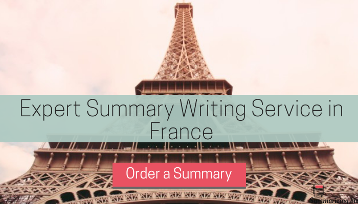 summarize an article service france